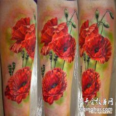 写实风格的彩色罂粟花手臂纹身图案