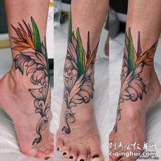 脚部彩色羽毛花蕊纹身图案