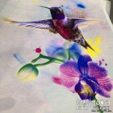 水彩泼墨写实蜂鸟花卉纹身图案手稿