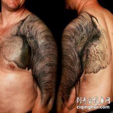 半甲精彩的逼真大象头纹身图案