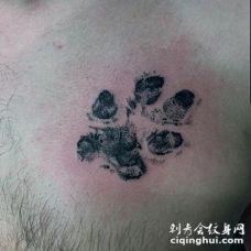 点刺风格的黑色动物爪印胸部纹身图案