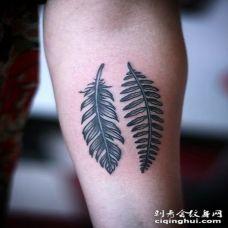 美式黑色的羽毛手臂纹身图案