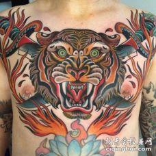 胸部美式传统的彩色老虎和交叉匕首火焰纹身图案