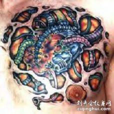 胸部奇特的3d生物艺术纹身图案