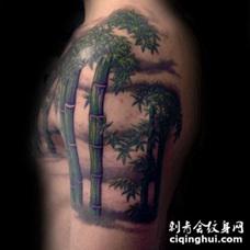 大臂3D风格的自然彩色竹子纹身图案