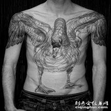 胸部3D风格惊人的黑色线条天鹅纹身图案
