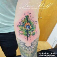 小臂孔雀羽毛彩色泼墨纹身图案