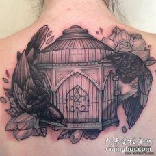 背部欧美鸟鸟笼植物纹身图案