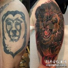 大臂欧美狮子遮盖纹身图案