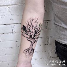 小臂树木线条乌鸦小清新纹身图案