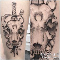 小腿线条点刺羊头骷髅匕首纹身图案