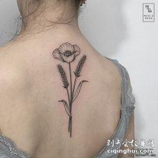 女生背部罂粟花纹身tattoo图案