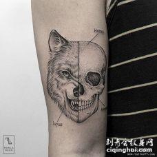 大臂邪恶的狼头骷髅纹身tattoo图案