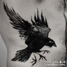侧腰欧美写实乌鸦tattoo图案