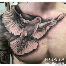 半甲欧美写实鸽子纹身tattoo图案