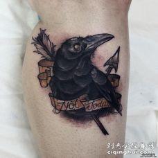 小腿箭刺乌鸦old school纹身图案