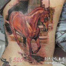 栩栩如生的彩绘创意场景与马纹身图案