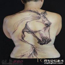 关于马的创意个性霸气纹身图案