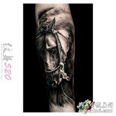 关于马的创意个性超写实3d霸气纹身图案