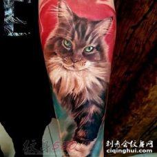 关于猫咪的超写实3d创意个性纹身图案