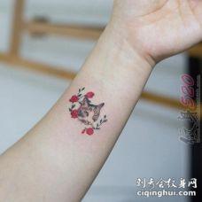 关于彩绘水彩文艺小清新小猫纹身图案