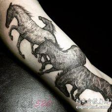 男生手臂上黑色线条素描创意个性马纹身图片