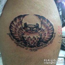 男生手臂上彩绘猫头鹰纹身图片
