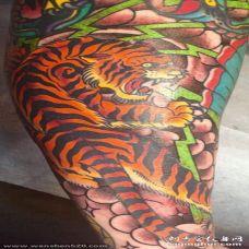男生手臂上彩绘花臂老虎纹身图片