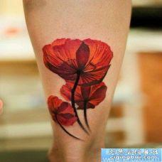 腿部漂亮时尚的罂粟花纹身图片