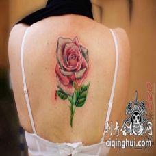 女生背部彩绘技巧植物素材文艺花朵纹身图片