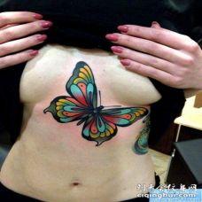 推荐一幅胸口彩色蝴蝶纹身图片
