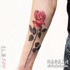 女生喜爱的彩绘植物素材抽象线条文艺花朵纹身图案