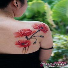 罂粟花纹身 侧腰性感的罂粟花纹身图案