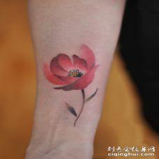 罂粟花纹身手臂图案 手臂罂粟花纹身图案