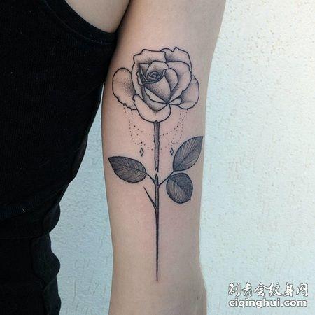断枝的黑色玫瑰花纹身图案