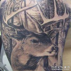 扭着脖子望远方的3D鹿和森林纹身图案