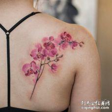 后肩一枝美丽的粉红色兰花纹身图案