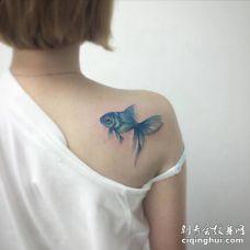 美女后肩漂亮的蓝色金鱼纹身图案