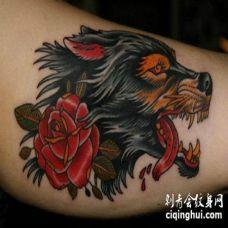 耷拉着红色舌头的狼和红花纹身图案