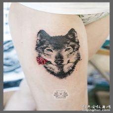 性感的美女大腿纹了一只叼着红色玫瑰花的黑色狼图案