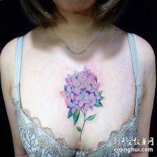 美女胸口多色绣球花纹身图片
