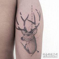 断了角的黑色鹿胳膊纹身图片