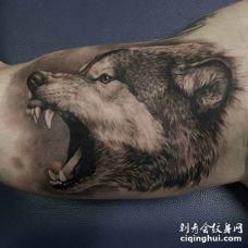胳膊处愤怒的黑灰色狼3D纹身图案