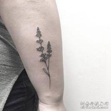 手臂黑色小清新薰衣草纹身图
