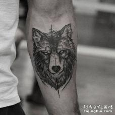 带着很严肃的表情的黑白色狼纹身图片