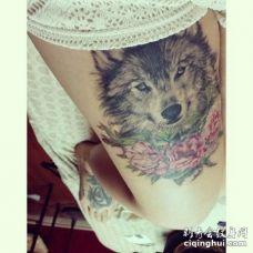 美女大腿处唯美的灰黑白狼和花纹身
