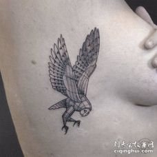 美女肋骨处一个3D的猫头鹰纹身图案