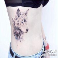 性感的美女腰部唯美狼头和花纹身图片