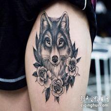 美女大腿部位黑色狼和玫瑰花纹身图案