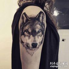 美女胳膊神情凝视的黑色狼头纹身图案